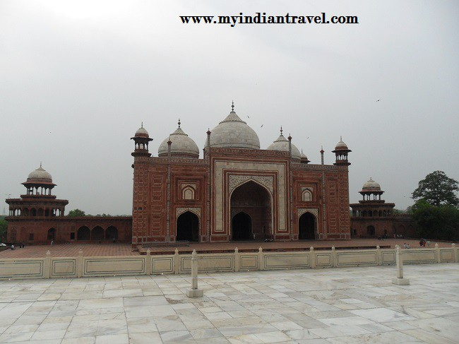 5  Motivos por los que visitar India una vez en la vida