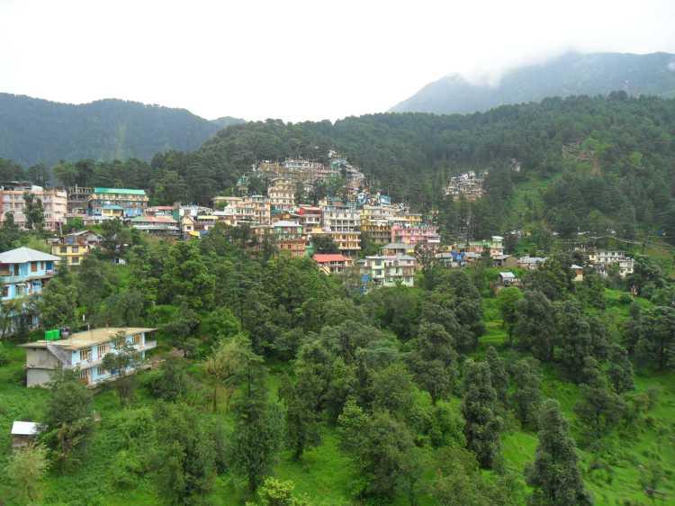 """""""Qué hacer en Dharamsala?"""""""