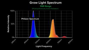 Philzon Spectrum