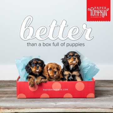 Paper Pumpkin by Stampin' Up! Better Than A Box Of Puppies!