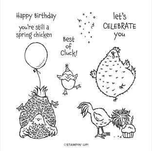 HEY BIRTHDAY CHICK CLING STAMP SET