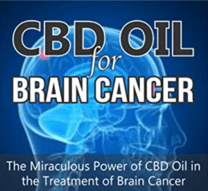 CBD increases survival time of brain tumor patients
