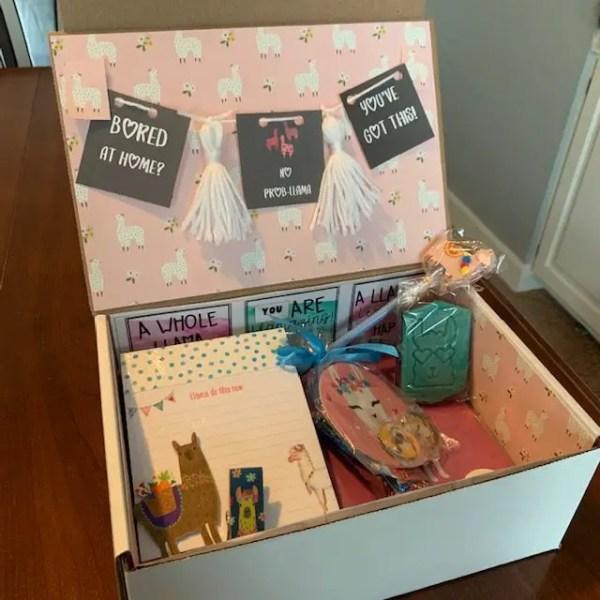 care package llama theme