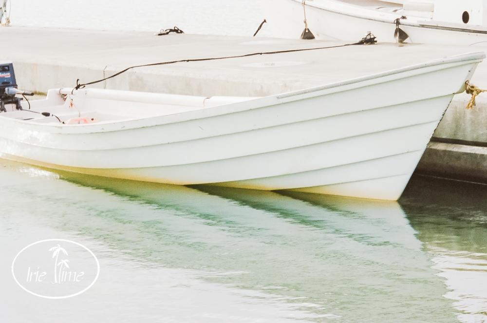 barbuda fuji 400h-1