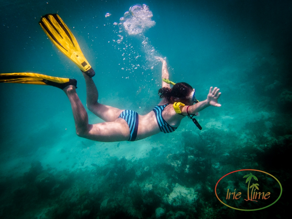 Underwater in Antigua and Barbuda