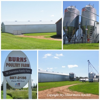 Burns Poultry Farm