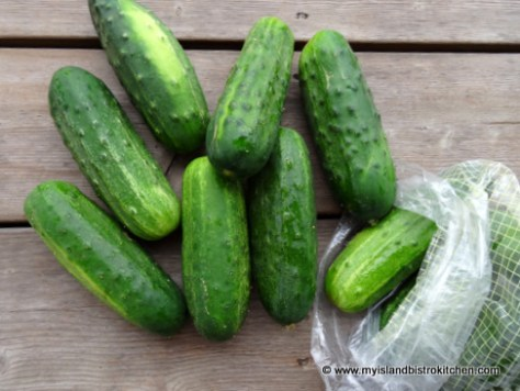 Small Pickling Cucumbers