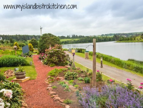 View from the window of the Prince Edward Island Preserve Company Restaurant alongside the River Clyde