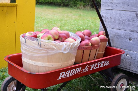 The Apple Wagon
