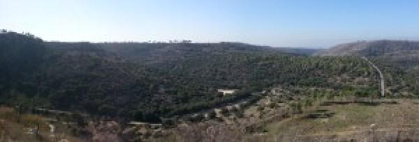 Panorama over Nachal Oren from Mishmar HaCarmel