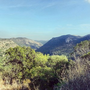 View from South bank of Nachal Kziv