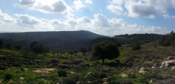 View over Ancient Yodfat