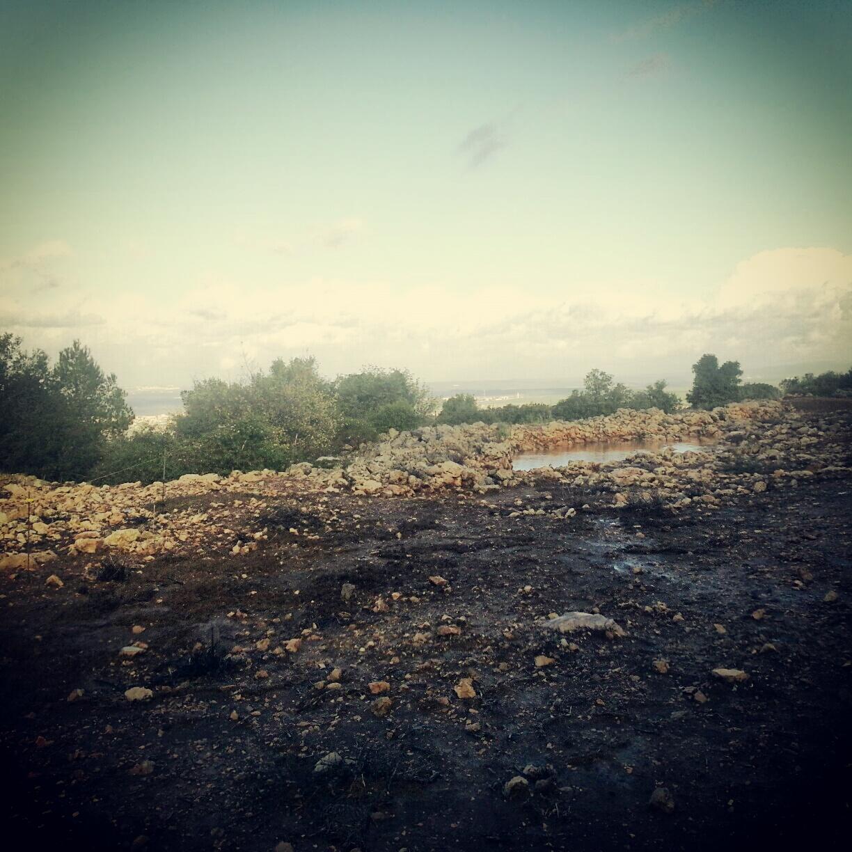 El Ahwat
