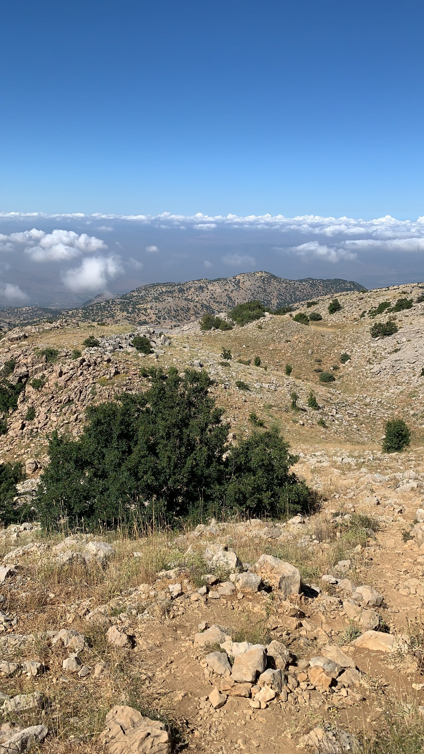 View from the peak of the Hermon Mountain