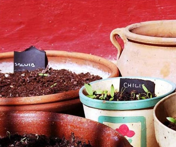 come fare giardinaggio per sconfiggere stress