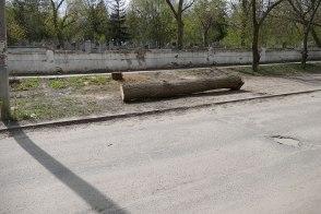 Городское кладбище Изюма по улице Капитана Орлова