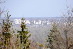 А в географическом центре города - лес