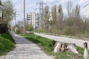 Когда то по улице Капитана Орлова росли вековые деревья и работали бюветы