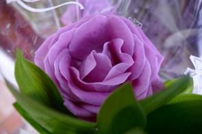 Из пожеланий Галине Павловне - цвети, как эта роза!