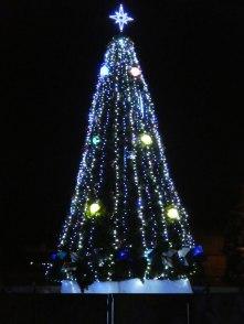 Праздничная елка города, декабрь 2016