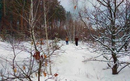 5 января 2019 года мои друзья пригласили меня в зимний лес