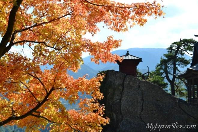 Japan_Autumn_Niigata