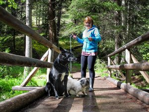 melody-walking-two-dogs