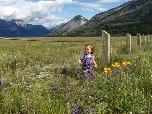 little-girl-in-field-of-alpine-flowers