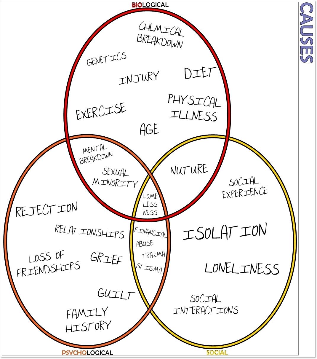 Mi Recovery The Biopsychosocial Model
