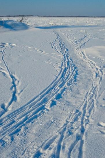 La gente arrastra trineos por aquí - People drag sleighs over here