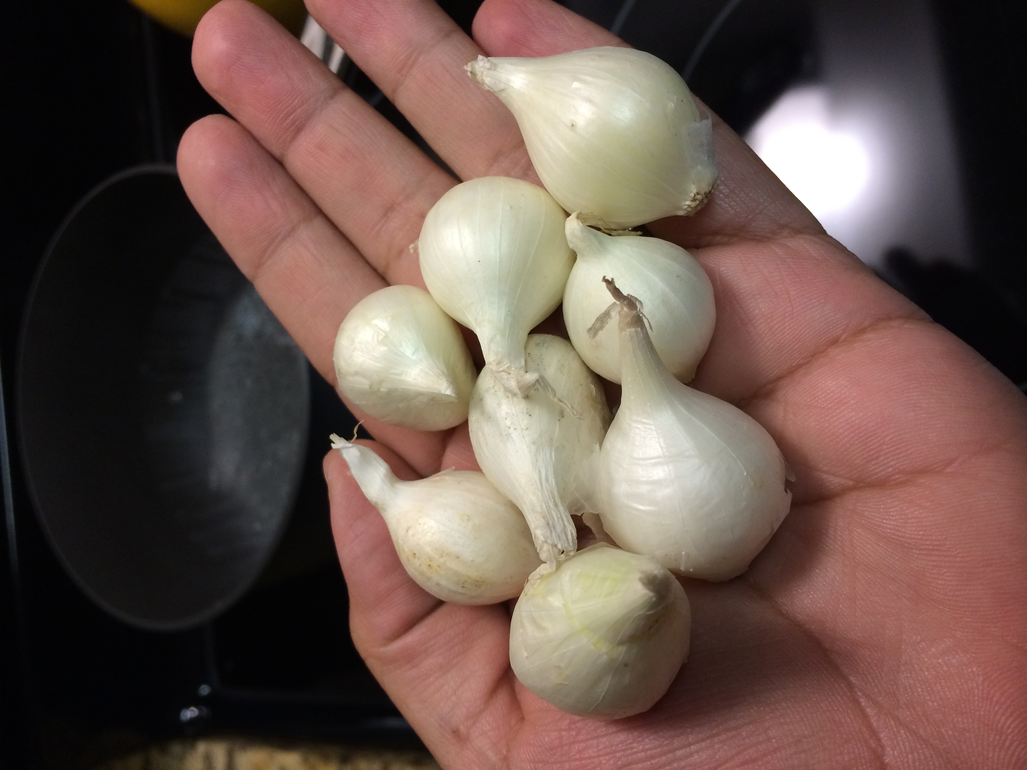 Easy peeling pearl onions recipes