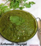 Coriander leaves Dip