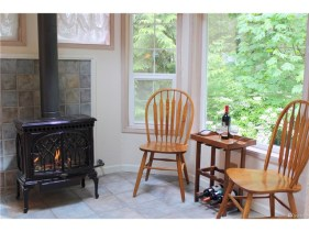 """The Design of this fireplace is called """"The tree of life""""."""
