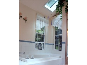 5-piece Master Bathroom features Skylights & Vaulted Ceilings