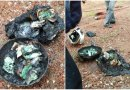 Wang tunai RM52,000 hangus terbakar