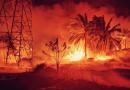 Lebih 24 jam padam kebakaran kebun sawit