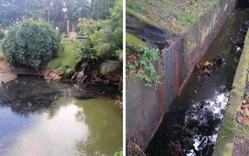 Premis jual-beli produk sawit 'haram' buang selori minyak hitam dalam sungai