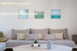 rent villa mykonos - mykonos services 19
