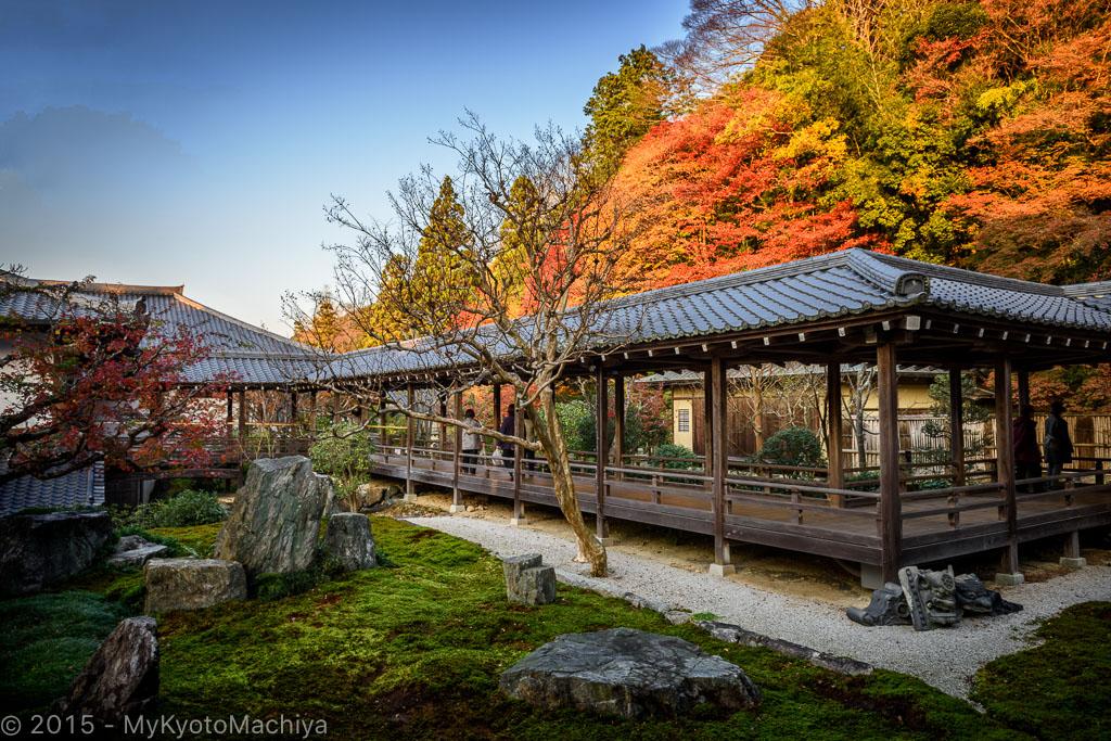 151130_Kyoto-Fall-2015--2