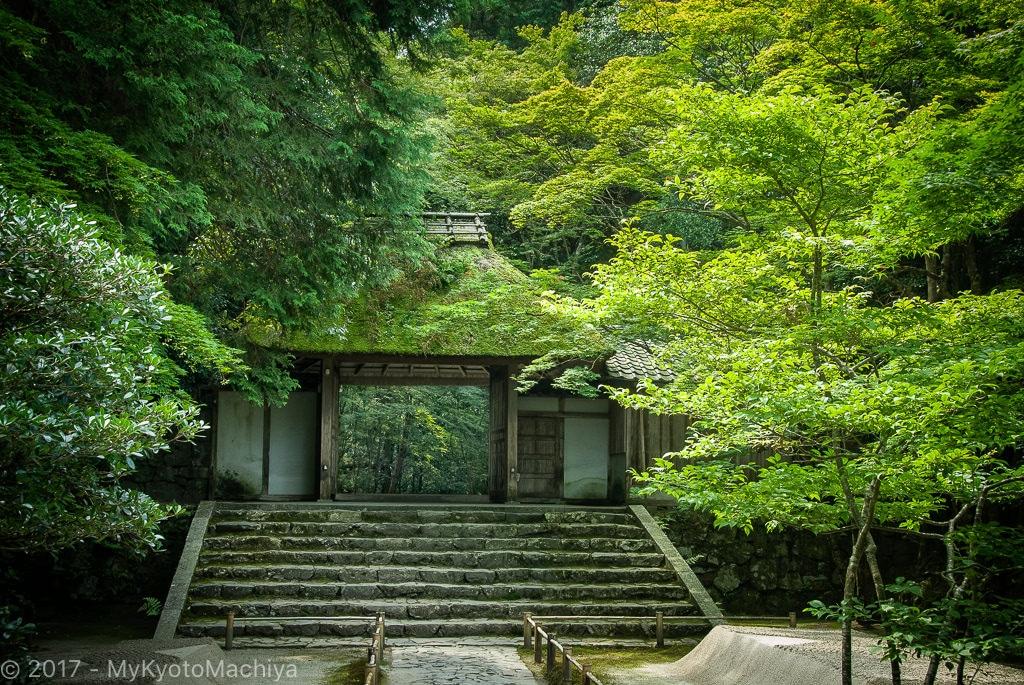 070819_Kyoto-Honen-In-Temple-Fall-6912