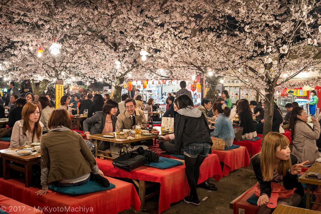 130404_Kyoto-Maruyama-Koen-Hanami-Party-2538