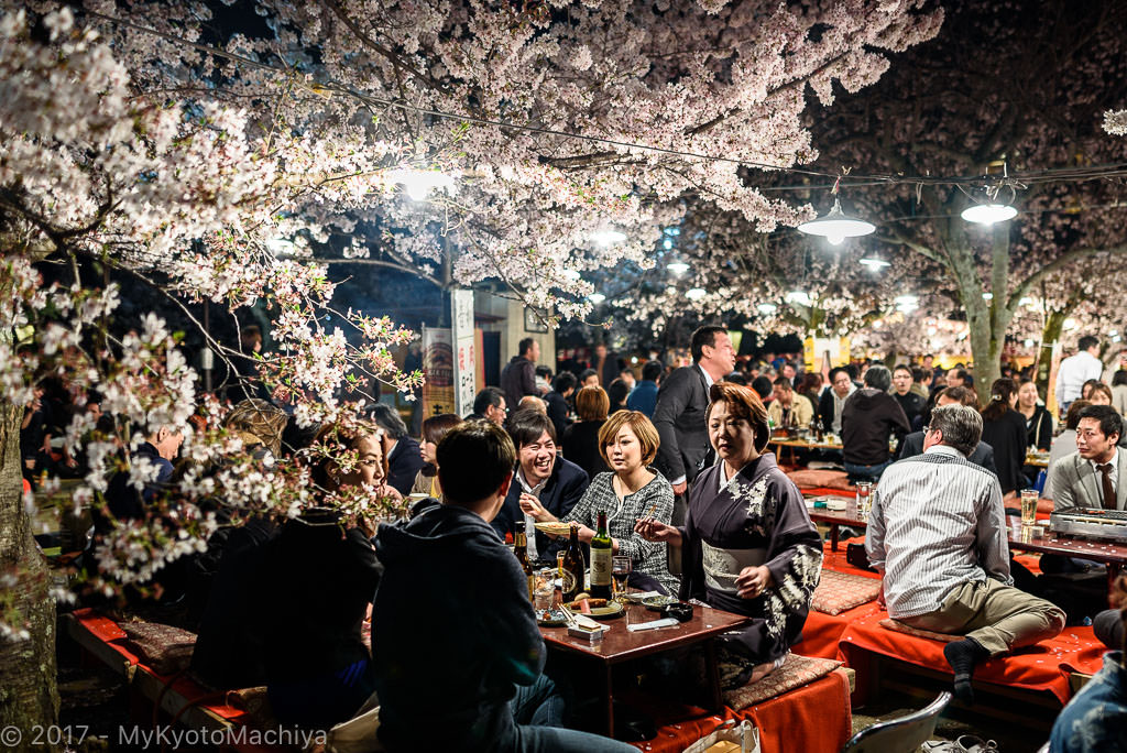 160406_Kyoto-Maruyama-Koen-Hanami-Party-756747