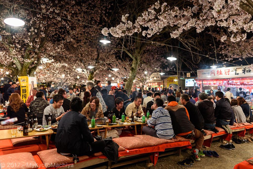 160406_Kyoto-Maruyama-Koen-Hanami-Party-756840