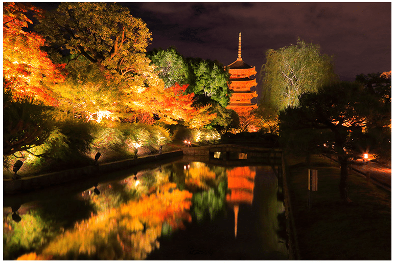 Light up of the Toji Temple