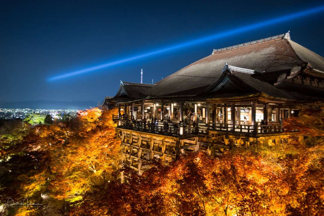 Kiyomizu Temple during a light up in Autumn