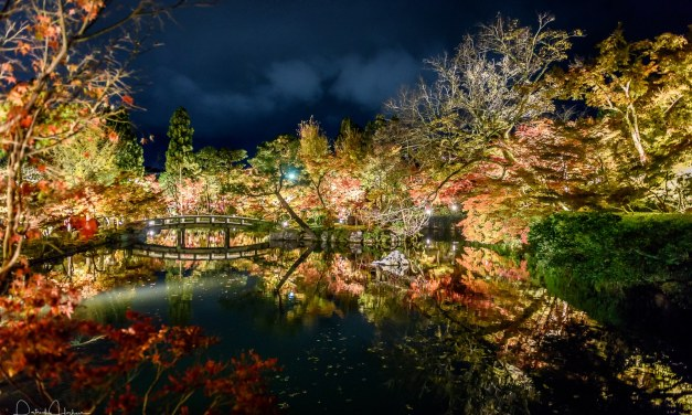 Light up at the Eikan-Do Temple