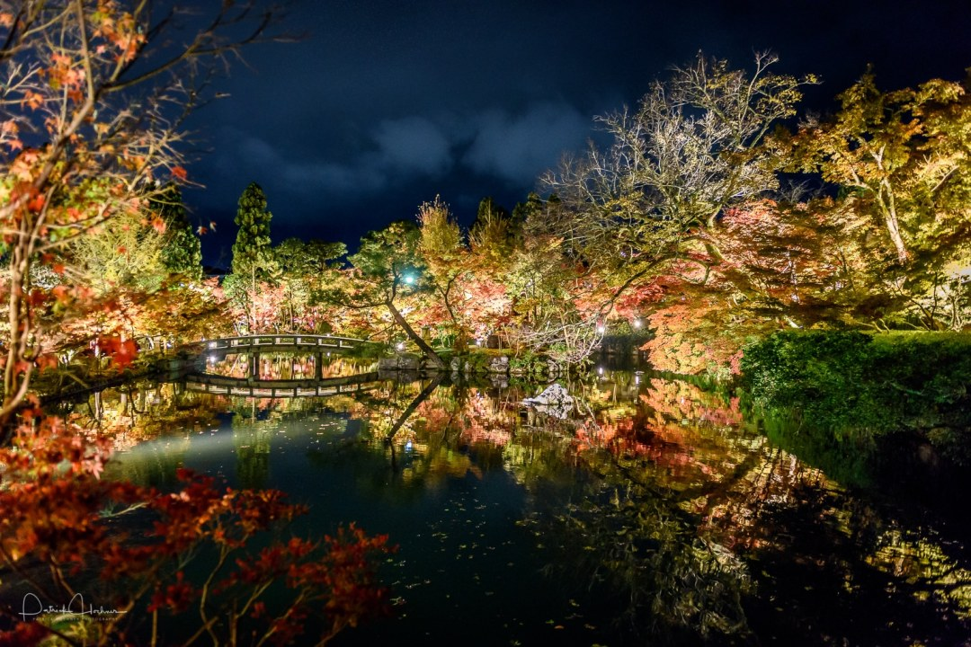 Light up during the Fall season, Eikando Zenrin-Ji Temple, Kyoto