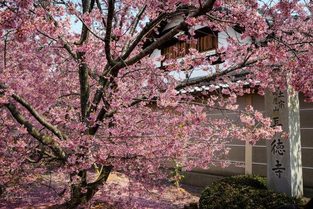 Chotoku-Ji Temple, Kyoto