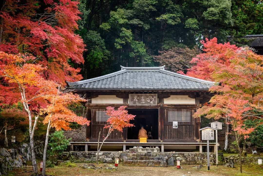 Jingo-Ji Temple in Takao, Kyoto