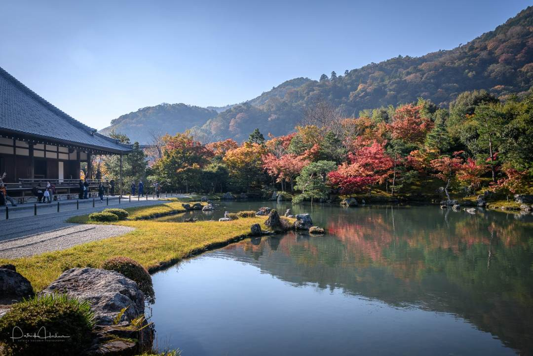 Fall colors behind the pond, Tenryu-ji Temple, Arashiyama